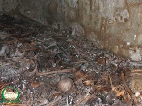 Jaffa-Mass_Grave