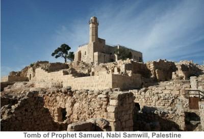 Nabi Samwill