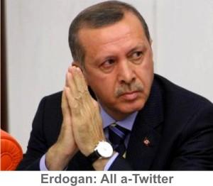 Erdogan-a-twitter