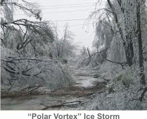 Polar_Vortex-IceStorm