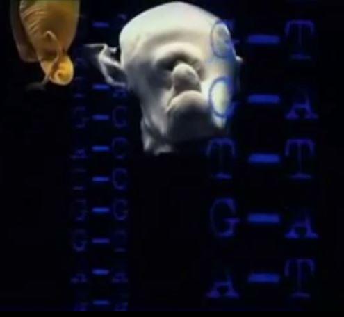AI-genes